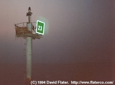 Buoy in the mist